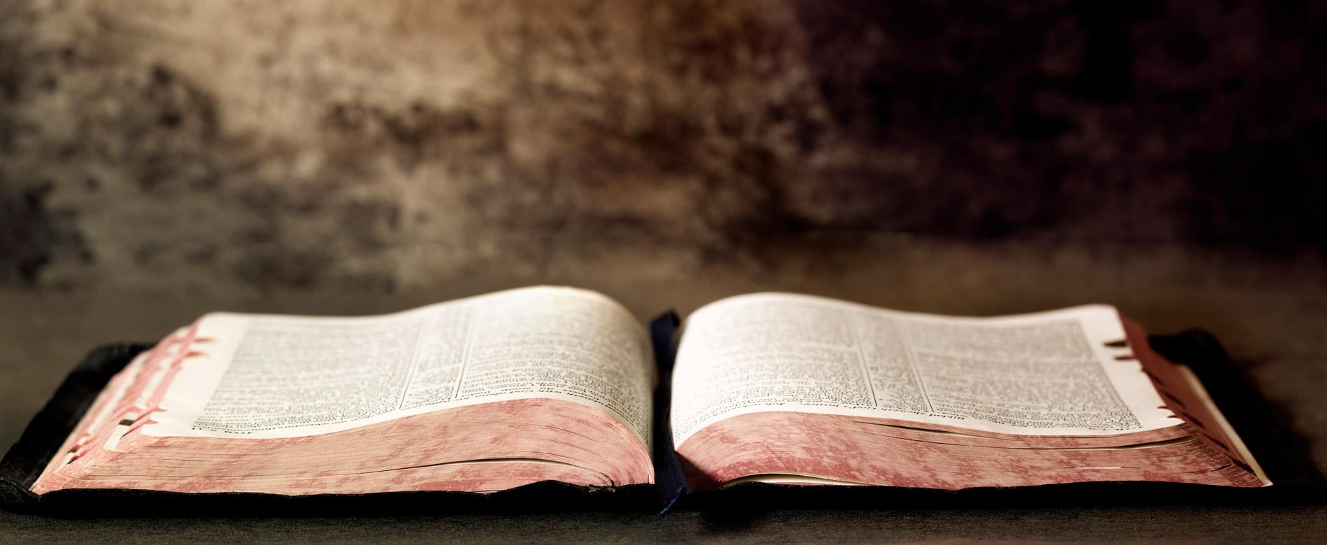 2.4 – La Voz de la Fe
