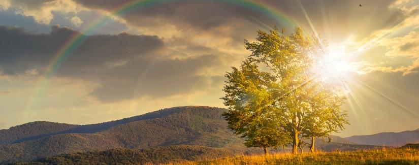 Qual è la grandezza del tuo Dio?