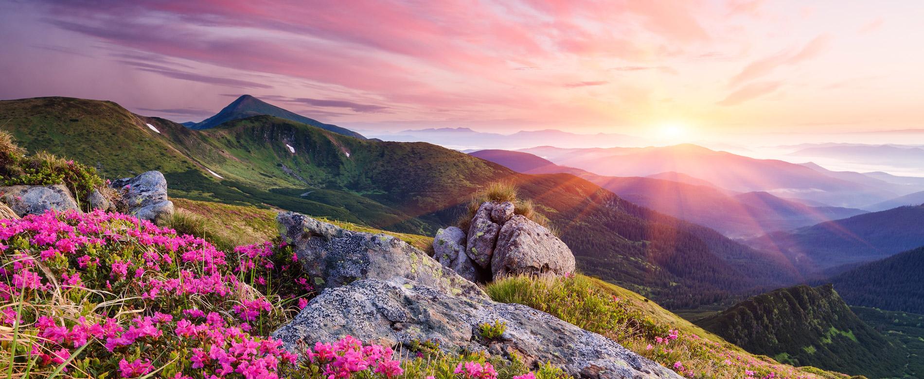 18-й день — Что мудрая вера делает с человеком?