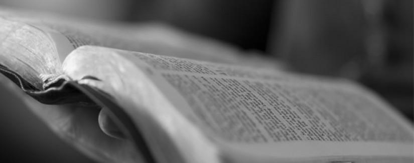 3º dia – Quem é testemunha de Jesus?