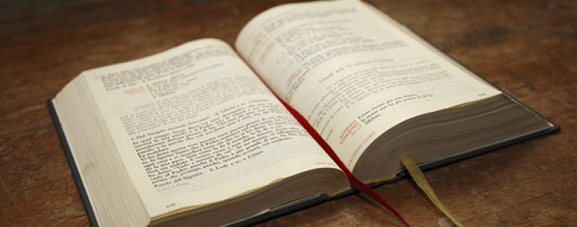 16º Dia – A fé obtém testemunho