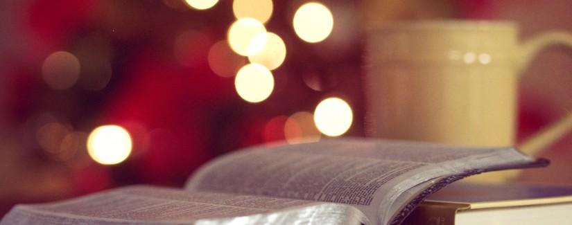 82 – 17º Dia | Ser O Testemunho